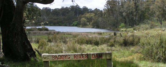 Paddys River Dam
